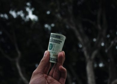 Hand holding up a roll of money against trees in the background